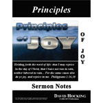 Image of The Principles of Joy by The Principles of Joy