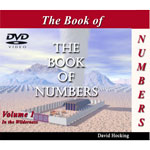 Image of Numbers by Numbers